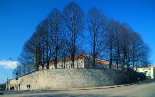 Toompea, Pikk Hermann kagust, 2008. Foto: Peeter Säre