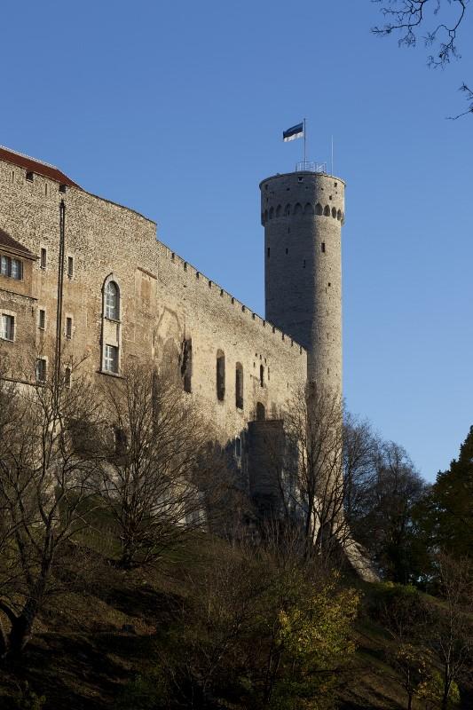 Tall Hermann Tower