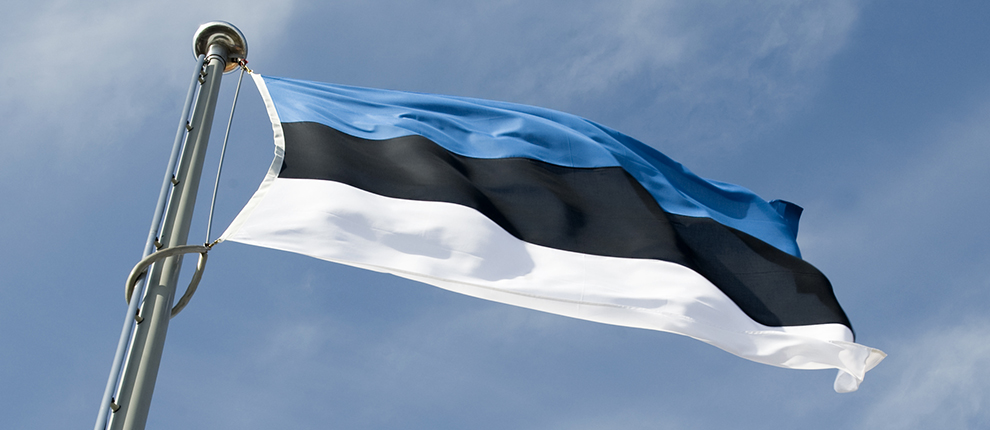 Flag of Estonia flying at the Tall Hermann Tower.