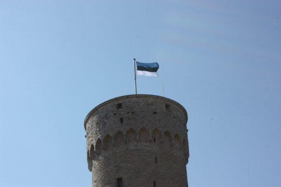 Pikk Hermann ja Eesti lipp