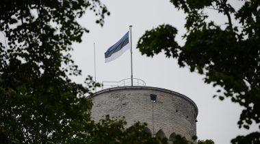 Eesti lipp lehvimas Pikas Hermannis