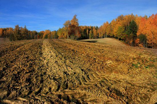 Küntud_põld_Lõuna-Eestis