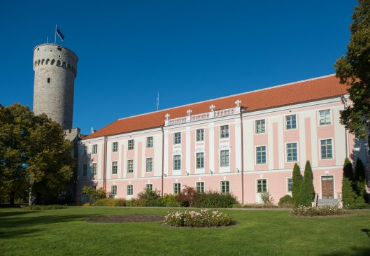 Pika Hermanni torn