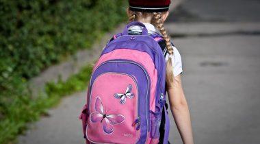 На инфочасе обсудили организацию учебы в школах в условиях распространения коронавируса