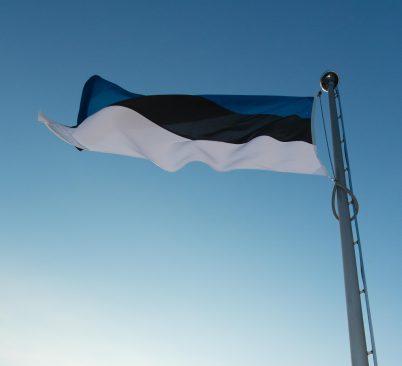 Sini-must-valge lipp