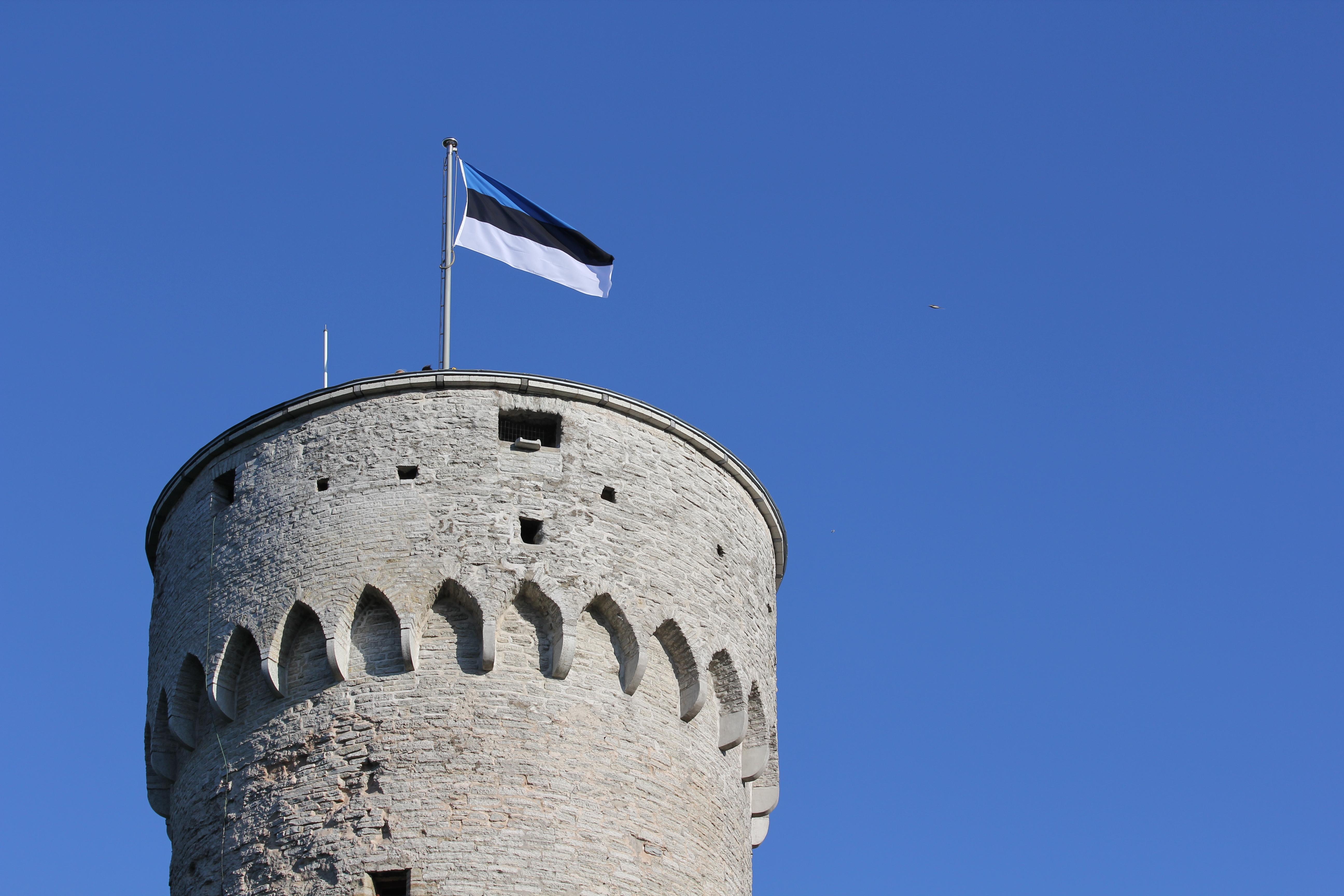 Riigikogu ja Eesti Lipu Selts kutsuvad pidulikule lipuheiskamisele