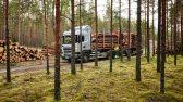 puidu väljavedu metsast