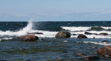 suur laine