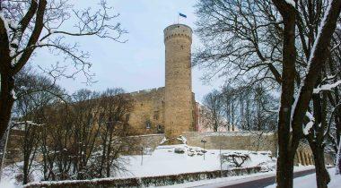 В феврале флаг на башне Длинный Герман будут поднимать члены организаций «Нооред коткад» и «Кодутютред»