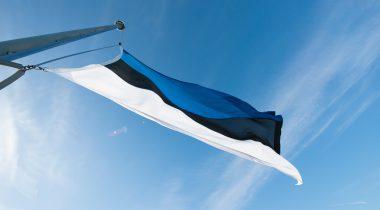 Sinimustvalge riigilipp