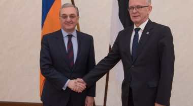 Nestor expressed support to the reforms in Armenia