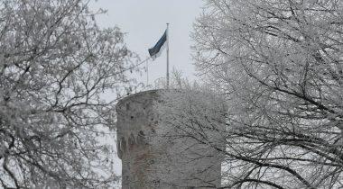 Pika Hermanni torn riigilipuga