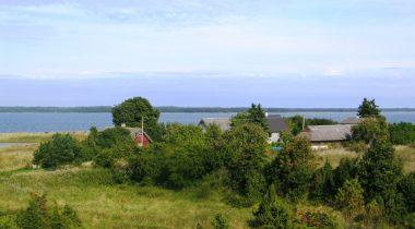 Maasi küla