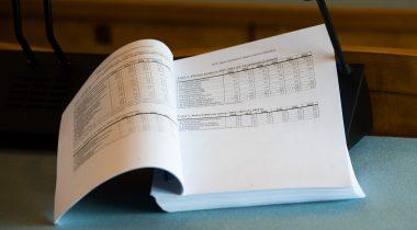 2020. aasta riigieelarve seaduse eelnõu