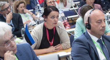ELAKi esimees Anneli Ott COSACi istungil Helsingis. Foto: Soome parlament