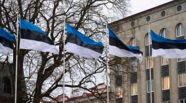 Eesti lipud. Foto: Erik Peinar