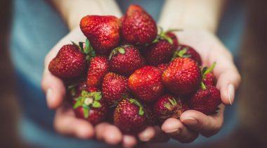 Maasikad. Foto: Pixabay